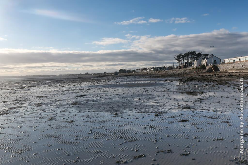 Auf diesem Bild kann man an den Bäumen gut die vorherschende Windrichtung und das aktuelle Wetter erkennen. Foto Challenge Meer Portmarnock