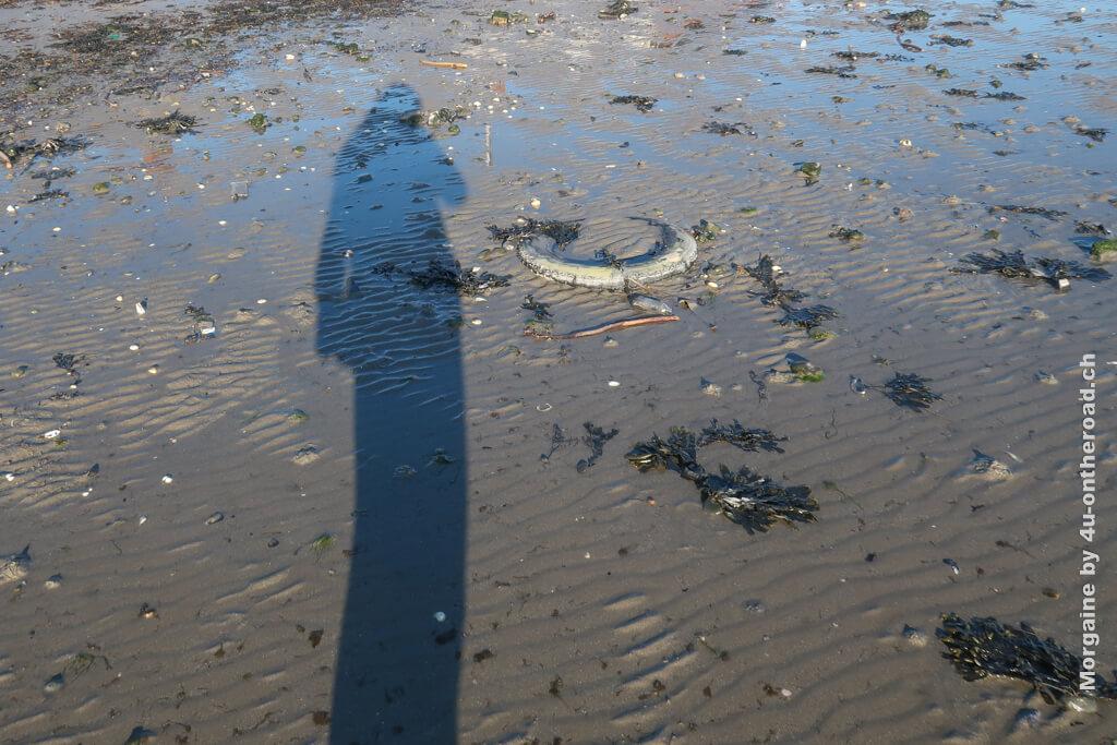 Zählt das Bild? Mein Schatten ist im Watt, umgeben von Müll, Algen und Muscheln. - Portmarnock
