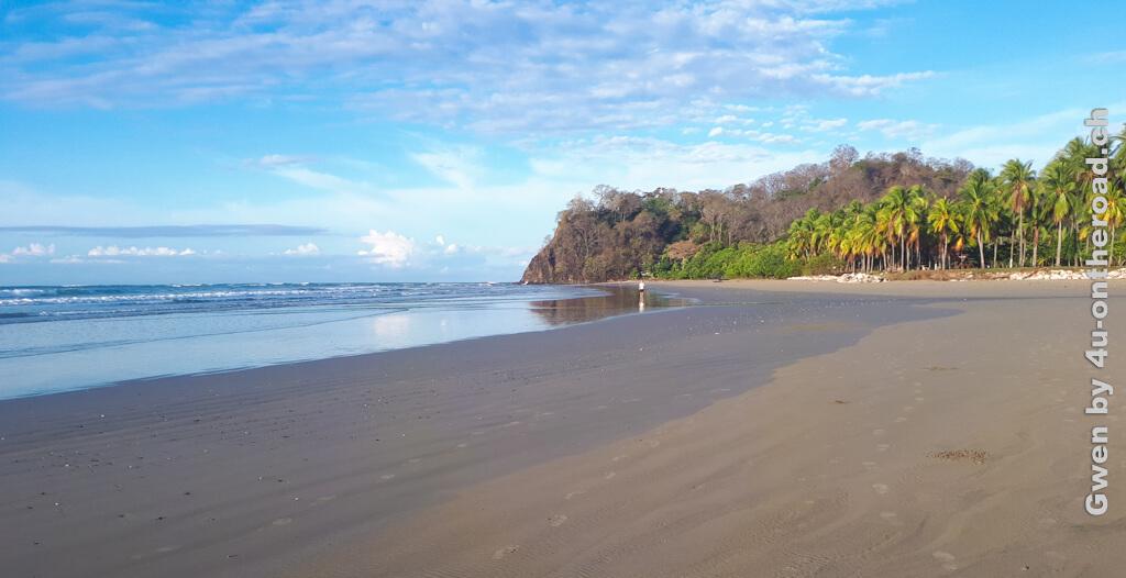 Blauer Himmel, grüne Palmen und das Rauschen der Wellen - hier bekommt man seinen Kopf frei. Sprachaufenthalt Costa Rica