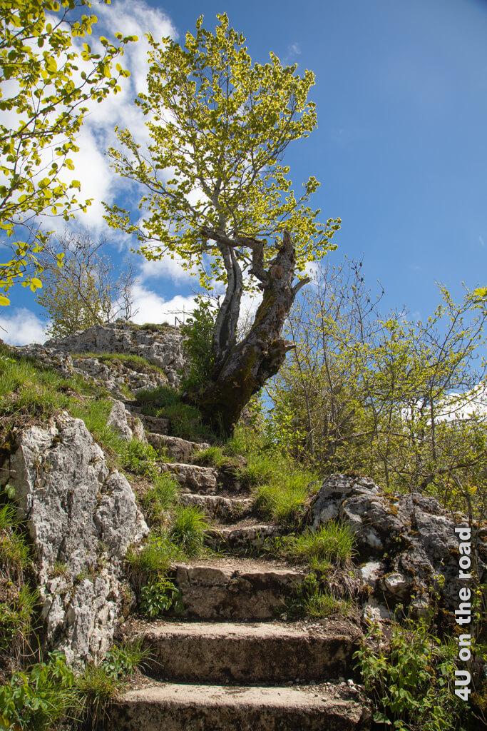 Fast oben - Wanderung zum Sommêtre Grat