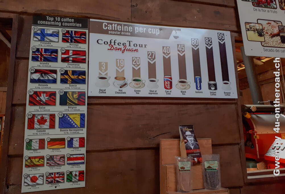 Die Schweiz liegt auf Platz 7 im weltweiten Kaffeekonsum. Ausflug nach Monteverde