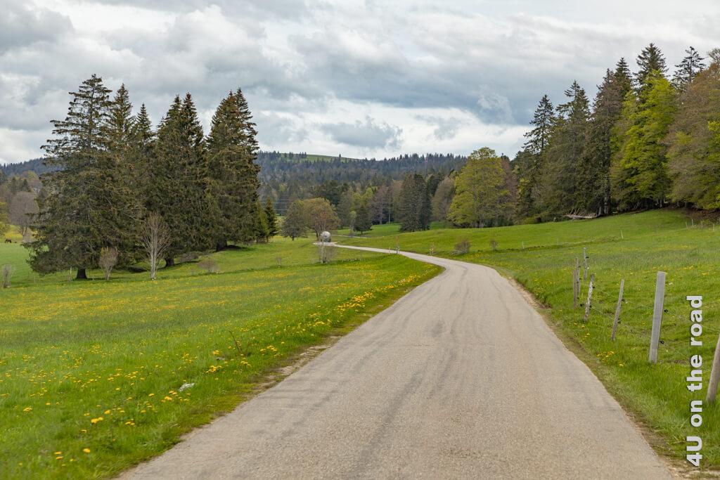 Da es weder rechts noch links neben der Strasse steil abfällt, ist die Fahrt sehr entspannt. - Mit dem Auto zum Creux du Van