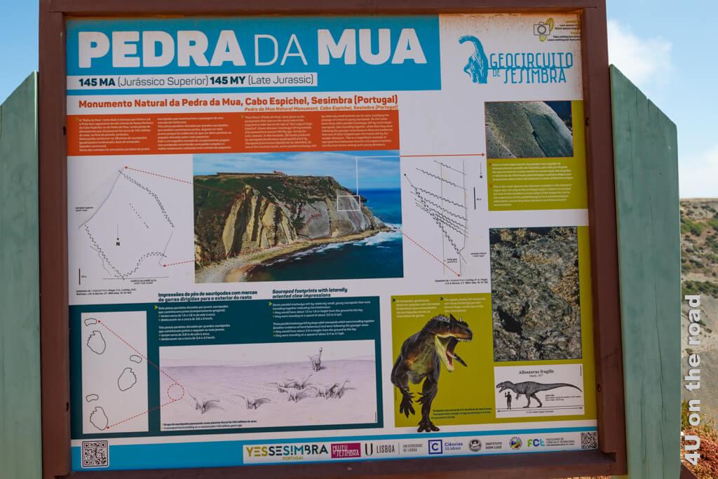 Selbst mit Anleitung sind die Spuren der Dinosaurier am Cabo Espichel schwer zu entdecken.