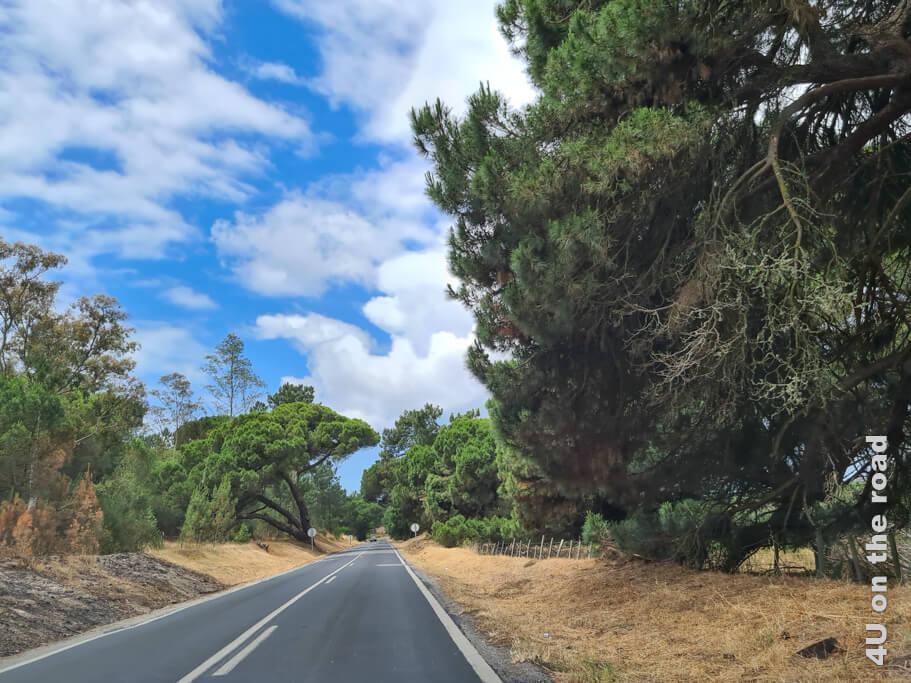 Landschaftseindruck auf dem Weg von Costa da Caparica zum Kap Espichel